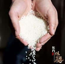 15年 新东北盘锦大米东方赐福蟹田新米10斤5kgPK五常稻花香